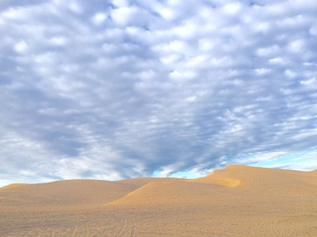 アリゾナ州との州境にあるGlamis Sand Duneと呼ばれる砂丘地帯
